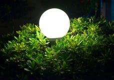 Street lamp in bush Stock Image