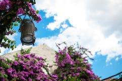 Street lamp, Croatia Royalty Free Stock Images