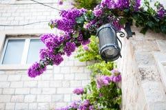 Street lamp, Croatia Stock Photos