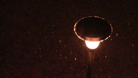 Street lamp falling snow stock video footage