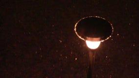 Street lamp falling snow stock video footage