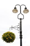 Street Lamp with Flower Stock Photo