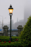 Street Lamp in the Fog Royalty Free Stock Image