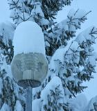 Street lamp with glass covered  of fresh snow Stock Images