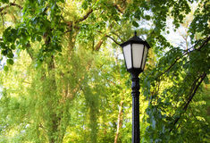Street lamp on the green tree background. In the park Stock Photography