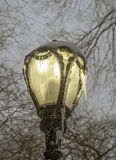 Street lamp with ice Royalty Free Stock Photos