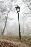 Street lamp and leafless trees in autumn Royalty Free Stock Photography
