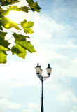 Street lamp with maple leaves Stock Image