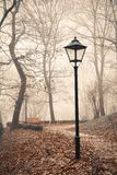 Street lamp in misty autumn forest park Stock Photo