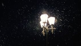 Street city lights illuminate the slowly falling snow. Night winter street lamp with falling snow. Beautiful snowfall stock video footage