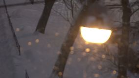 Street lamp at night during a snowstorm.  stock video
