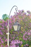 Street lamp in the old style. Royalty Free Stock Images