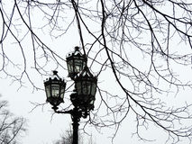 Street lamp in the park. St. Petersburg Stock Photography