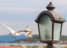 Street lamp by sea. Royalty Free Stock Image