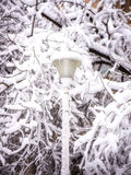 Street lamp in snow royalty free stock photography