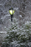 Street lamp in a snow storm Royalty Free Stock Photography