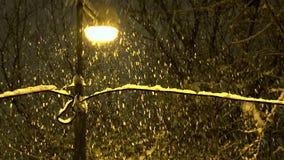 Street Lamp and Snowfall stock video