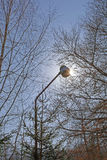 Street lamp with sunlight Stock Image