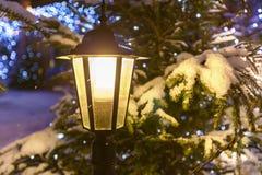 Street lamp. Royalty Free Stock Photo