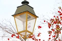 Street lamp, tree with red leaves in autumn royalty free stock photography
