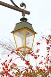 Street lamp, tree with red leaves in autumn royalty free stock photo