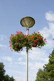 Street lamp with two flowerpots Royalty Free Stock Photo