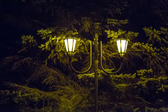 Street lamp with two vintage shades Stock Images