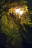 Street lamp with two vintage shades Royalty Free Stock Photo
