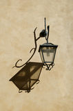 Street lamp on wall in Rome Stock Photography