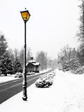 Street Lamp In Winter. Landscape covered in snow with one street lamp Royalty Free Stock Photography