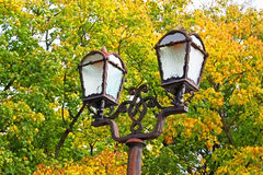 Street lamp on yellow leaves background Stock Photography