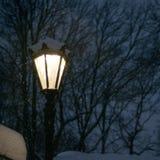 Street lamps illuminate the falling snow. Winter blizzard in park stock photo