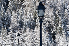 Street lamps on a winter cold landscape Royalty Free Stock Photography