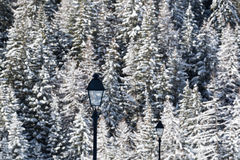 Street lamps on a winter cold landscape Stock Photos