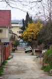 Street landscape in Adler, the Big Sochi Stock Photography