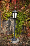 Street lantern on autumn foliage Stock Photos