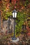 Street lantern on autumn foliage. Background Stock Photos