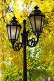 Street lantern on the autumn foliage background Stock Photos