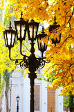 Street lantern on the autumn foliage background Stock Photography