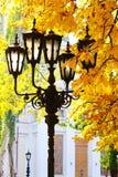 Street lantern on the autumn foliage background Stock Photography