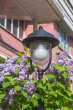 Street lantern among lilac at house Stock Photo