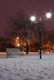 Street lantern in park Stock Image