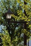 Street lantern in the sun, Tokyo royalty free stock image