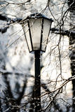 Street lantern in winter snowy city park Royalty Free Stock Photography