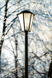 Street lantern in winter snowy city park Stock Photography