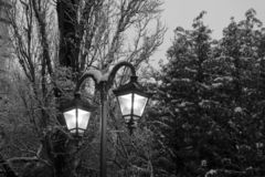 Street lanterns covered in snow. royalty free stock images
