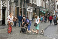 Street life in busy shopping street in Maastricht. Netherlands,south Limburg province, city Maastricht: in the Muntstraat, in this busy shopping street in the stock photo