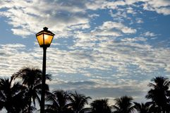 Street light. A street light glows golden in the early morning. Coconut palms serve as a silhouettes and a backdrop royalty free stock photo