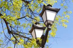 Street light against the blue sky Stock Image