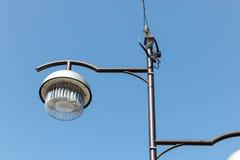 Street light with blue sky background., street light Stock Image